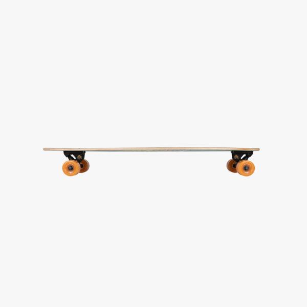 artist fish arbor skateboard kaufen schweiz