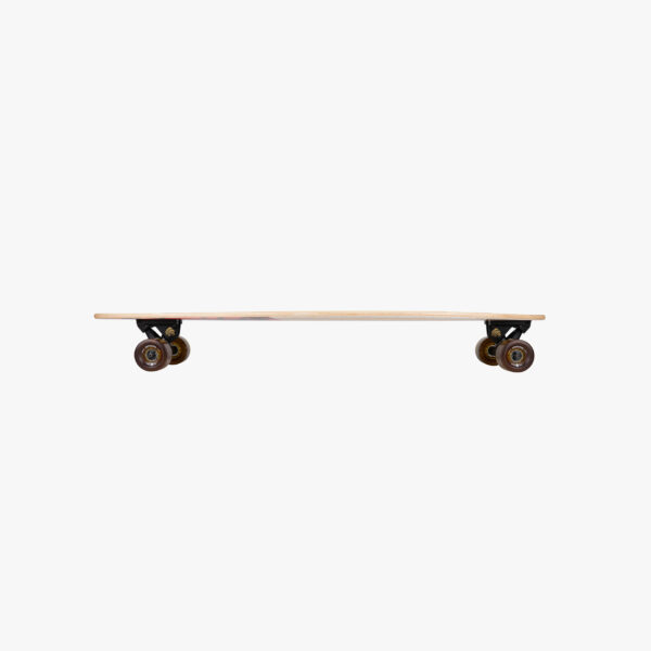 groundswell fish arbor skateboard schweiz kaufen fishtail